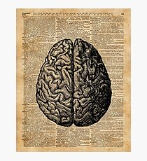 Lámina fotográfica Vintage Human Anatomy Brain Illustration Dictionary Book Art Art