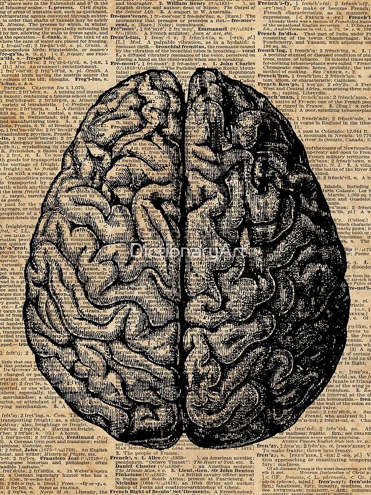 Weinlese-menschliche Anatomie-Gehirn-Illustrations-Wörterbuch-Buch-Seiten-Kunst von DictionaryArt
