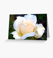 Beauty simplified Greeting Card