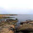 Gullbranna shoreline  by João Figueiredo
