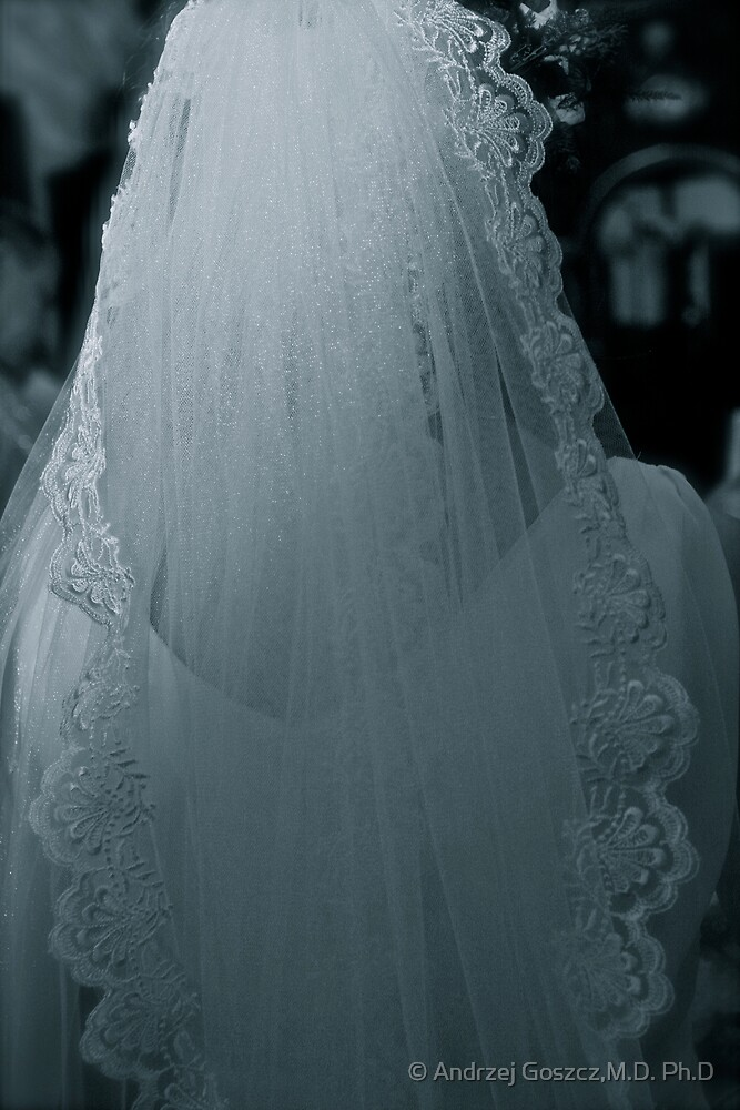 Ave Maria .Miracle Wedding . by  Doctor Faustus . was featured in Hat Heads! by © Andrzej Goszcz,M.D. Ph.D