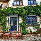 House Garden on Street by Özkan Konu