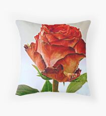 Painted with light Throw Pillow