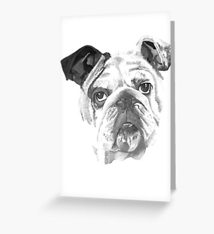 Portrait Of An American Bulldog In Black and White  Greeting Card