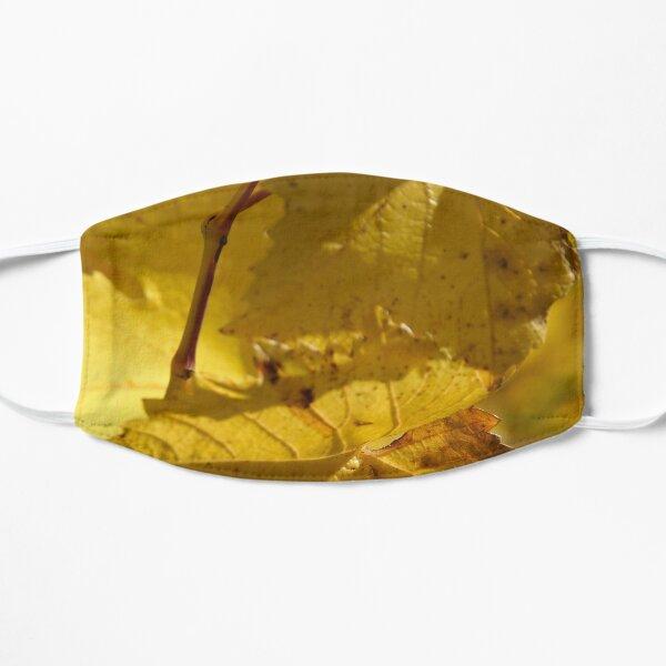 Autumn Vine - by South Australian artist Avril Thomas Mask