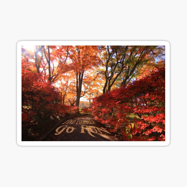 Find Yourself Go Run Autumn Leaves Fall Season Sticker