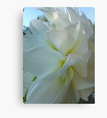Dahlia. by Brown Sugar.  Floral iPad series. You are a gift if you like ! Metal Print