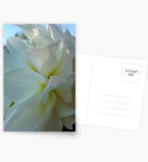Dahlia. by Brown Sugar.  Floral iPad series. You are a gift if you like ! Postcards