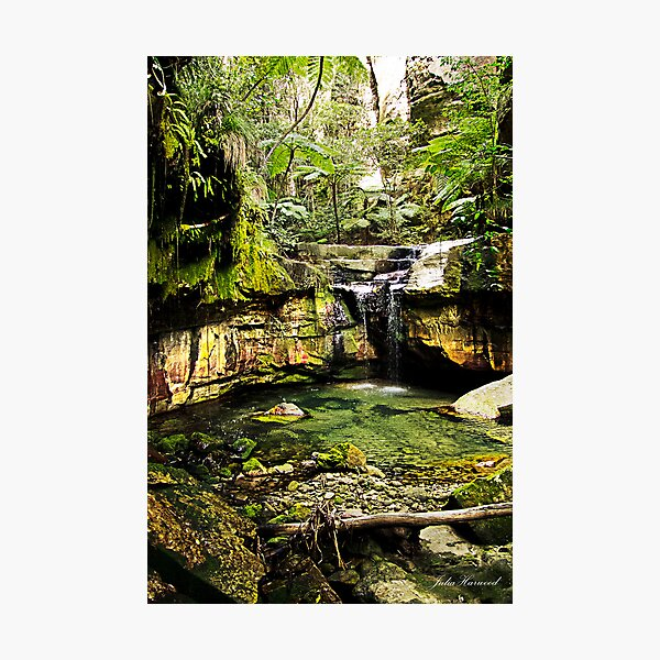 Moss Garden, Carnarvon Gorge, Queensland Photographic Print