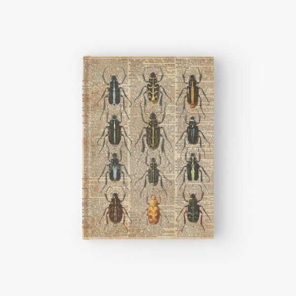 Beetles & Bugs,Insect Chart,Biological Illustration on Vintage Dictionary Book Page Background Hardcover Journal
