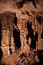 Lehman Cave by WorldDesign