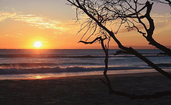 sunrise on kingscliff beach  ... by gail woodbury