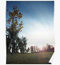 Golden Sunset 04 Poster