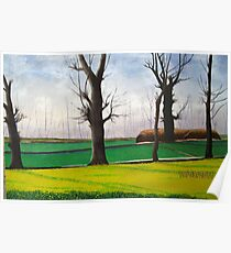 mustard field along the silk rout Poster