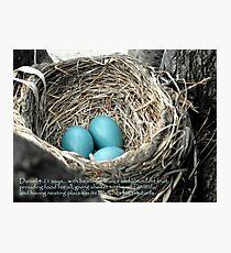 Robins Egg Blue - Verse Photographic Print