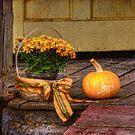 Autumn by Lois  Bryan