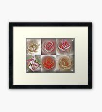 Magical Roses Framed Print