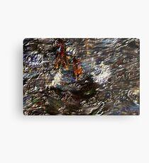 Tide Water Marsh Metal Print
