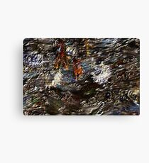 Tide Water Marsh Canvas Print