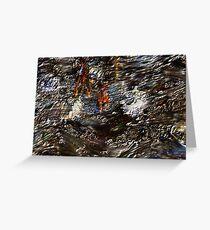 Tide Water Marsh Greeting Card