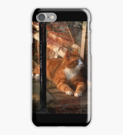 thomas in the greenhouse iPhone Case/Skin