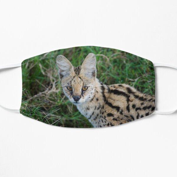 Serval Flat Mask