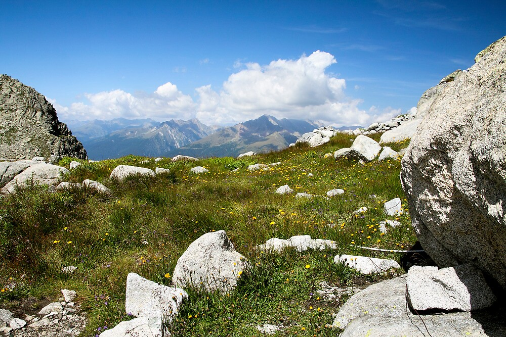 On the top by Cristim