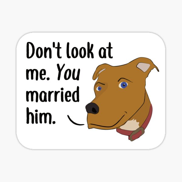 Don Not Look At Me. You Married Him. Sticker
