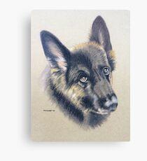 Koffi the beautiful German Shepherd Canvas Print