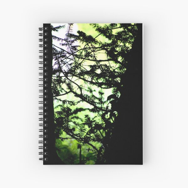 Shadows of the Yew Spiral Notebook