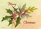 A Christmas Wish by Diane Hall