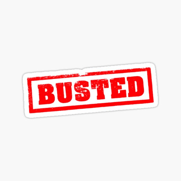 Busted Logo (red) Sticker