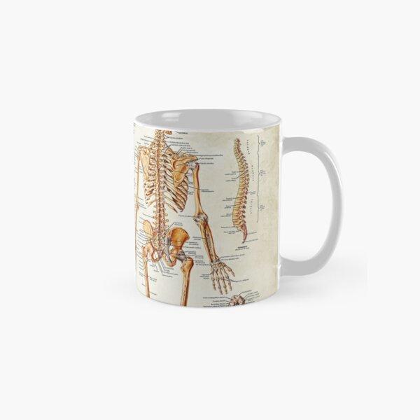 Antique Anatomy Classic Mug