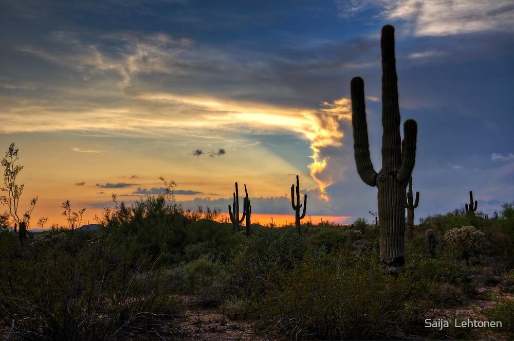 A Southwestern Sunset  by Saija  Lehtonen