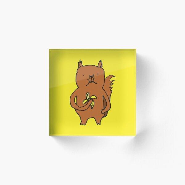 Banana Squirrel Acrylic Block