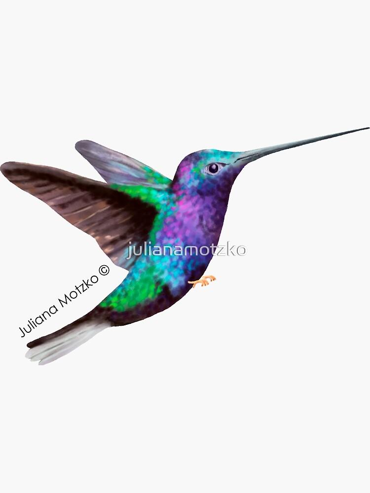 Hummingbird by julianamotzko