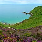"""Jersey Heather, Northern Coastal View"" by Bradley Shawn  Rabon"
