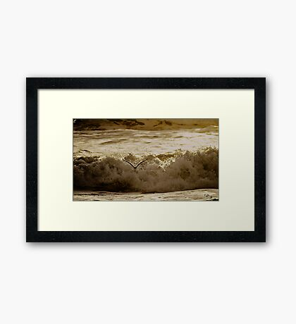 Bird Over Troubled Waters Framed Print