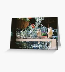 Laughing at the Lake House, Daylesford Greeting Card