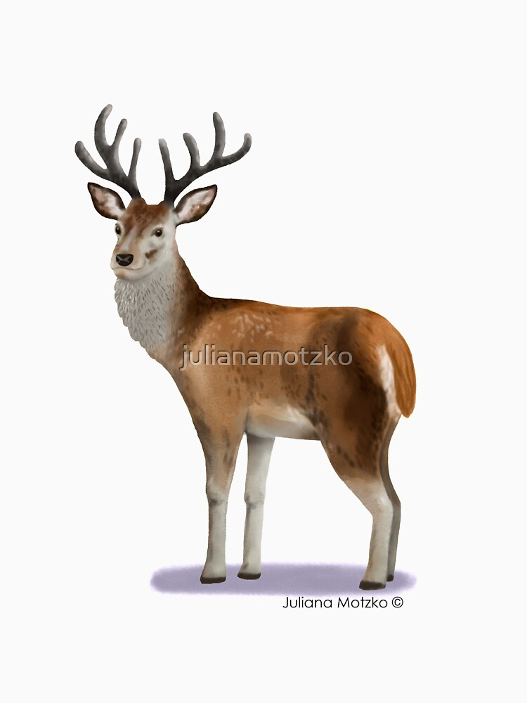 Deer by julianamotzko