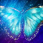 """Butterfly 5 (from """"Butterflies"""" collection) by EvaMarIza"""