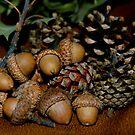 Acorns and Pine Cones by bunnij
