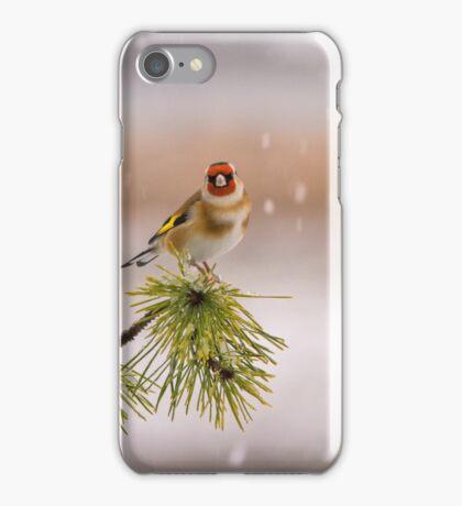 Goldfinch  iPhone Case/Skin