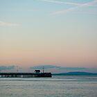 Penarth Sunset by Hannah Welbourn