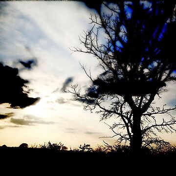 Dreamland by newbeltane