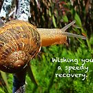 Wishing You A Speedy Recovery by Eve Parry