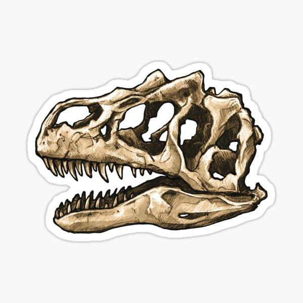 Dinosaur Skull Allosaurus Sticker Sticker