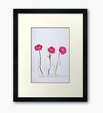 359 - 365  Framed Print