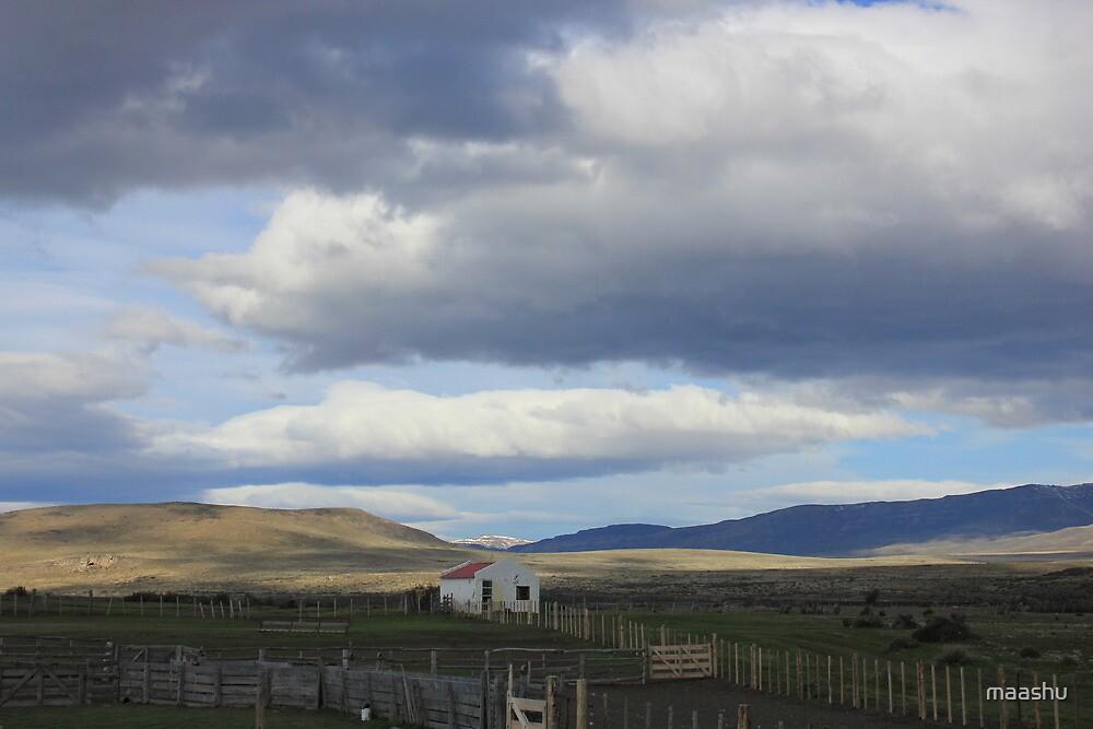 Plains of Patagonia by maashu