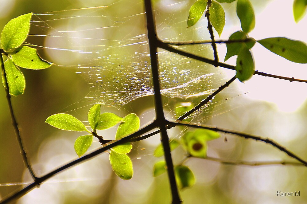 Leaves and Webs by KarenM